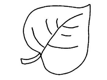 jungle leaf colouring pages