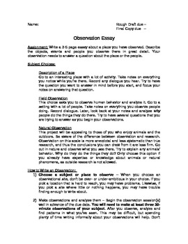 Observation Essay Paper Examples