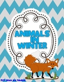 Animals in Winter--A Mini Unit