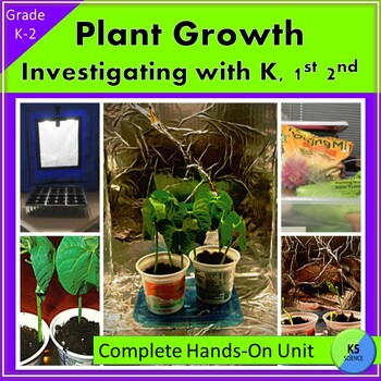 Growing Plants in a Light Hut:  Kindergarten, First, and S